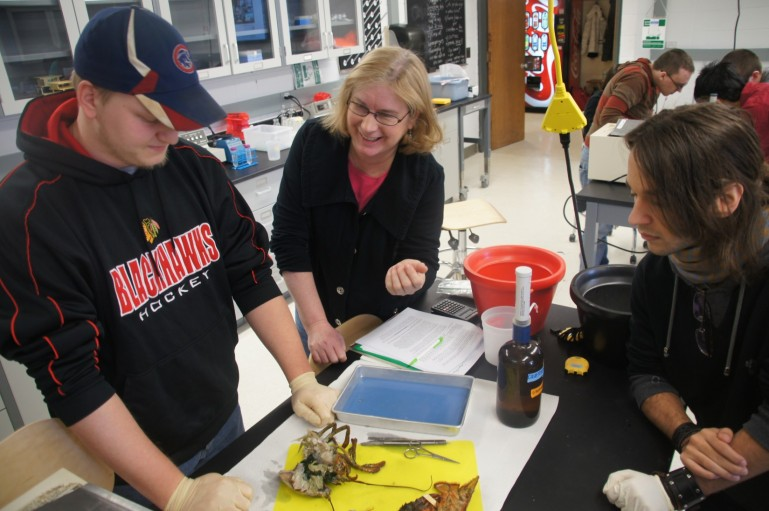 Professor Karen Kirk gives hands on help during a lobster lab in the new state-of-the-art science laboratory.
