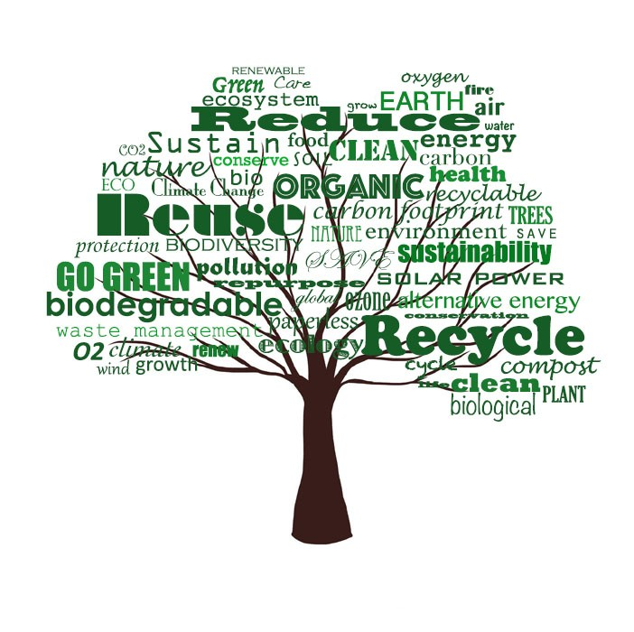 Word tree made of words associated with sustainability