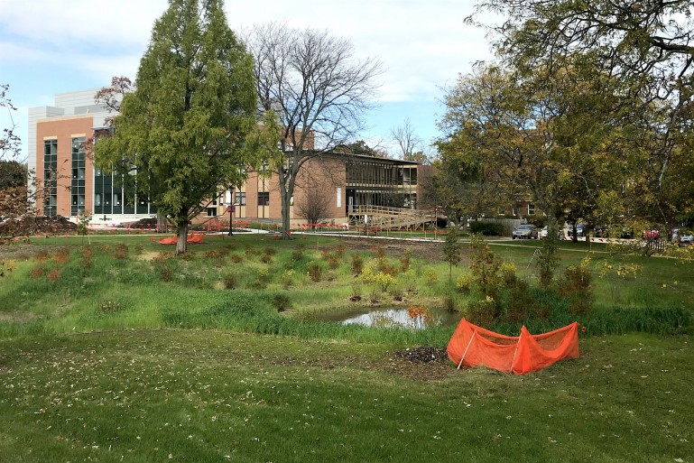 The Wetland Learning Lab manages stormwater runoff from the Lillard Science Center.