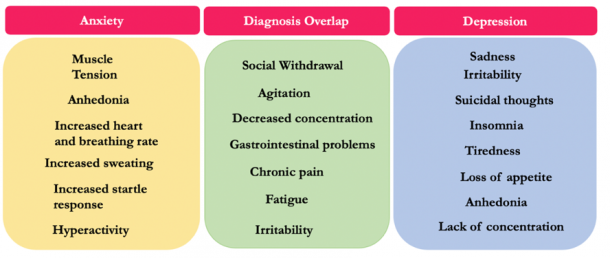 Figure 2. Symptomology of Anxiety and Depression. Anxiety and depression are one of the most widely diagnosed mental disorders worldwide. Nevertheless, they often occur in comorbidity and their symptoms can often overlap. This figure is a summary of symptoms associated with both anxiety and depression as well as the list of symptoms that often overlap across the two diagnoses.