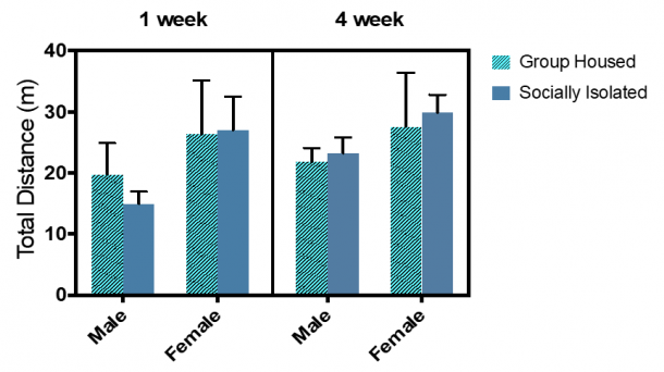Figure 11.1.  Total distance traveled in an open fields chamber did not differ significantly across groups. Combined group (±SEM) mean of 1-week SI and GH male and female rats versus the 4-week SI and GH male and female rats.