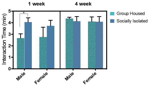Figure 12.2.  Total interaction time significantly differed between 1-week GH and SI male rats.  Combined group (±SEM) mean of 1-week SI and GH male and female rats versus the 4-week SI and GH male and female rats.
