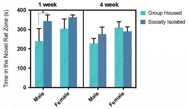 Figure 13.4.  Sex, social isolation duration and housing condition showed main effects on the time spent in the novel rat zone.  Combined group (±SEM) mean of 1-week SI and GH male and female rats versus the 4-week SI and GH male and female rats.
