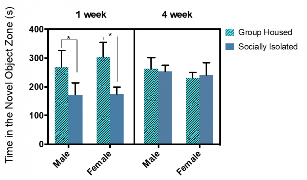 Figure 13.3. 1-week social isolation resulted in decreased time spent in the novel object zone for both male and female rats. Combined group (±SEM) mean of 1-week SI and GH male and female rats versus the 4-week SI and GH male and female rats.