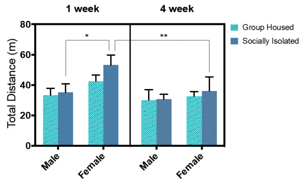 Figure 13.1.  Sex and social isolation duration showed a main effect on the total distance in CPP chamber. Combined group (±SEM) mean of 1-week SI and GH male and female rats versus the 4-week SI and GH male and female rats.