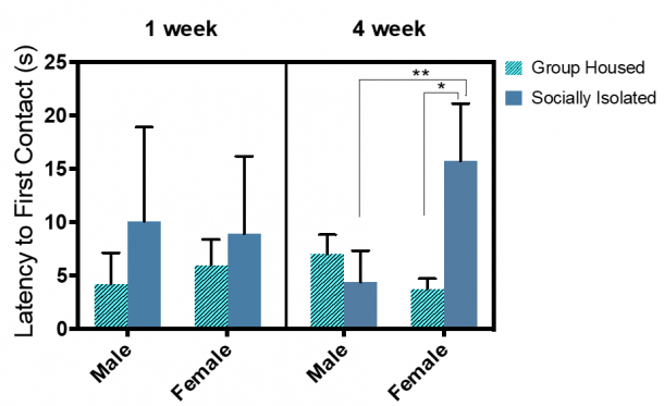 Figure 12.3.  Latency to first contact was mostly pronounced in 4-week SI female rats.  Combined group (±SEM) mean of 1-week SI and GH male and female rats versus the 4-week SI and GH male and female rats.