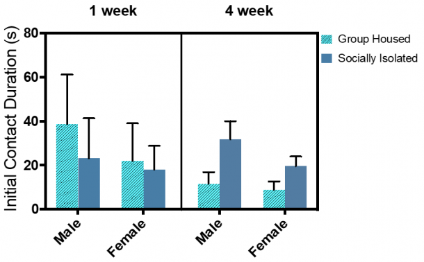 Figure 12.4.  No significant differences were found in the initial contact duration test.  Combined group (±SEM) mean of 1-week SI and GH male and female rats versus the 4-week SI and GH male and female rats.