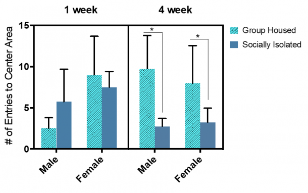 Figure 11.2.  Total number of entries to the center area significantly decreased after a prolonged social isolation for both males and females. Combined group (±SEM) mean of 1-week SI and GH male and female rats versus the 4-week SI and GH male and female rats.