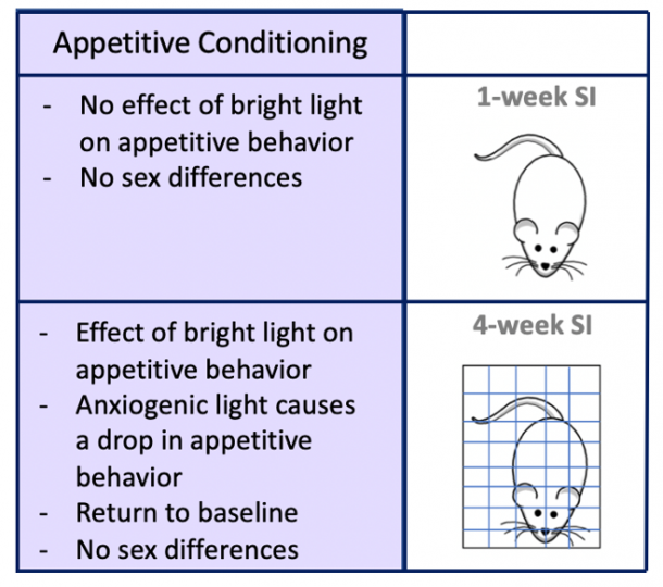 Figure 17. Effects of Social Isolation on Reward Seeking in the Presence of a Stressor. Using Appetitive Conditioning with anxiogenic bright light we determined the effects of social isolation on anhedonia, a common symptom of depression.