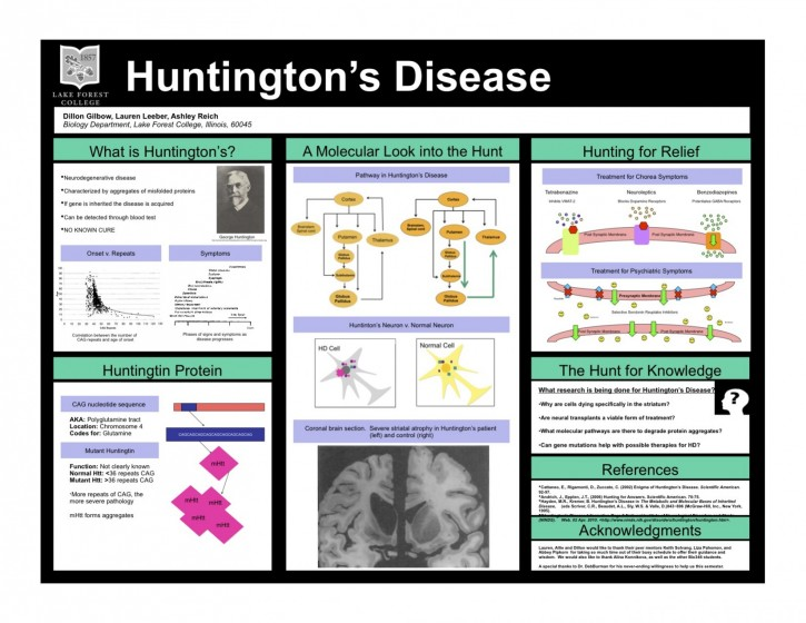 an overview of huntingtons disease introduction stages research and diagnosis An overview of huntington's disease introduction historical background prognosis stages of hd symptoms and signs physical symptoms emotional symptoms mental symptoms genetics of huntington's disease inheritance mechanism functions of htt effects of mhtt on cells  world historic review for huntington's disease therapeutics by geographic.