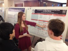 Ashley Reich '13 won the Second Prize for presenting her senior thesis work  in Dr. Michelle Hasting's lab at Rosalind F...