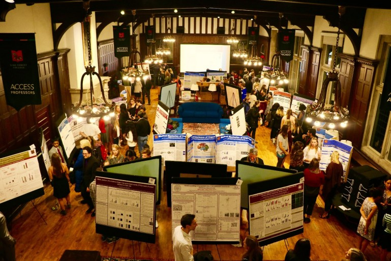 A view from above of the poster session