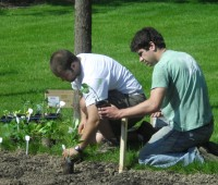 Stephen Yena and Morgan Brazie work in the salsa garden.