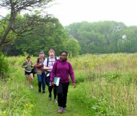 Summer students hike a remnant prairie near campus to identify wildflowers.