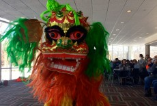 Students experienced a traditional Lion Dance during lunch on February 19.