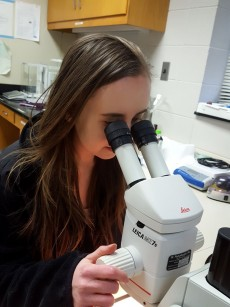 Jeanne McDonald '19 in the lab