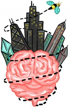 Chicago Brain Bee
